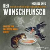 Hörbuchcover  - Der satanarchäolügenialkohöllische Wunschpunsch